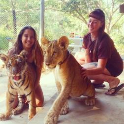 Safari Family